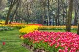 istanbul_tulip_festival_lale_2011_03_27-3