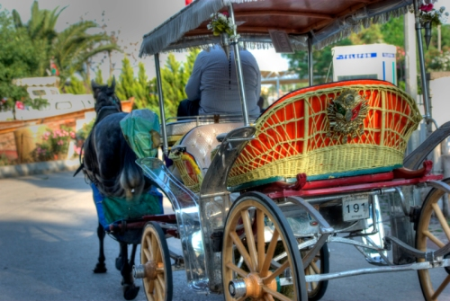 "Typical vehicle of prince's islands ""fayton"" , Büyükada, İstanbul, pentax k10d"