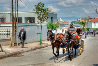 istanbul_buyukada_island_2011_06_24-12