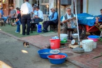 fishers and cat :), büyükada-Istanbul, pentax k10d