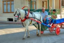 istanbul_buyukada_fayton_2011_07_12-11