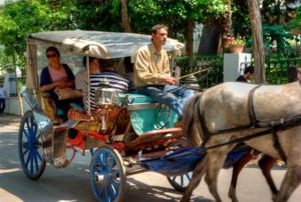 istanbul_buyukada_fayton_2011_07_12-13