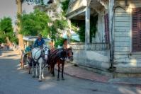 istanbul_buyukada_fayton_2011_07_12-14