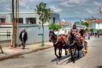 istanbul_buyukada_fayton_2011_07_12-9