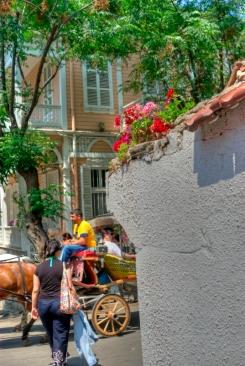 istanbul_buyukada_prince_island_2011_07_12-21