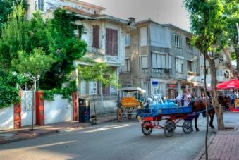 istanbul_buyukada_ozgur_ozkok_20110816-14
