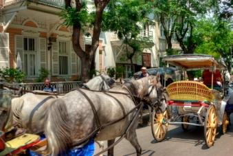 Büyükada, Adalar-İstanbul, prince's islands , by ozgur ozkok, pentax k10d