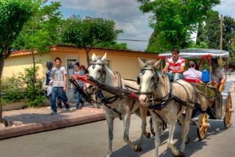 istanbul_buyukada_ozgur_ozkok_20110816-17