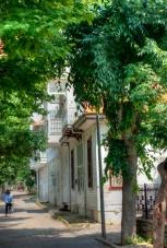 istanbul_buyukada_ozgur_ozkok_20110816-3