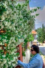 istanbul_buyukada_ozgur_ozkok_20110816-5