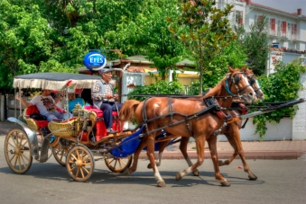 istanbul_buyukada_ozgur_ozkok_20110816-7