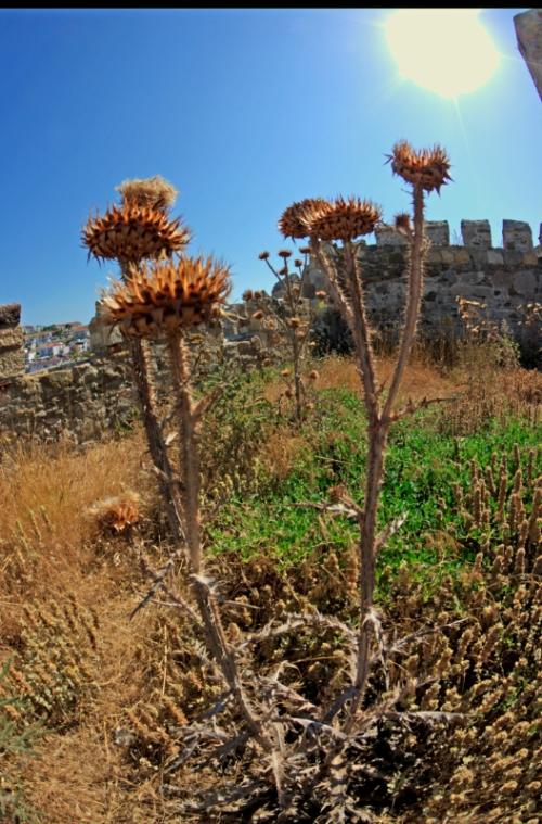 Bozcaada fortress, Bozcaada kalesi, Canakkale, pentax k10d