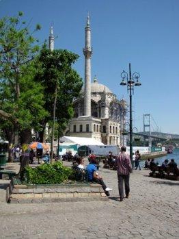 istanbul_eleka_rugam_rebane-3