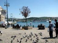 istanbul_eleka_rugam_rebane-41