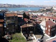 istanbul_eleka_rugam_rebane_kasimpasa-3