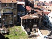 istanbul_eleka_rugam_rebane_kasimpasa-4