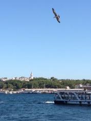 istanbul_christel_de_preter-9