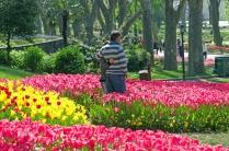 istanbul_tulip_lale_festival_ozgurozkok (14)