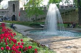 istanbul_tulip_lale_festival_ozgurozkok (5)