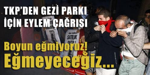 occupy_istanbul_taksim_diren_gezi_park (1)